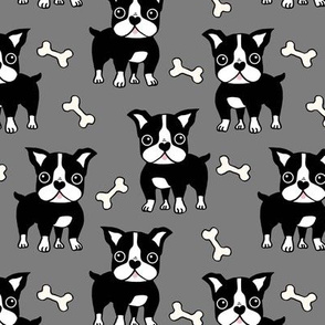 Boston Terrier black on grey