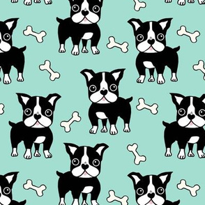 Boston Terrier black on mint