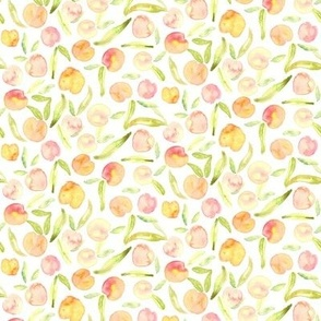 19-16ab Watercolor Peach Summer Fruit || Coral pink green leaf leaves _ Miss Chiff Designs