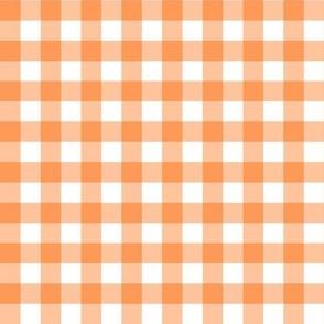 Orange & White Gingham