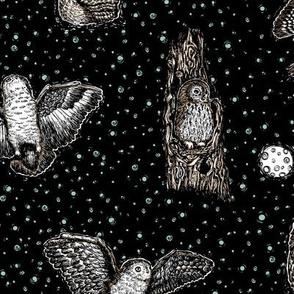 Owls at Midnight Black