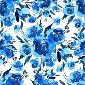 Bright blue roses flowers bouquets on white background