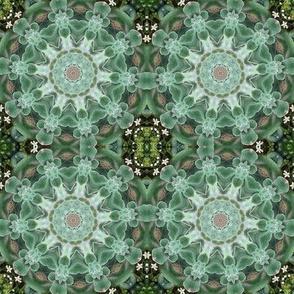 Green Succulent Pinwheel 1430GR