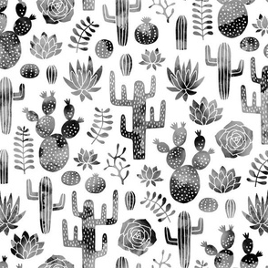 Cactus and succulent monochrome black watercolor