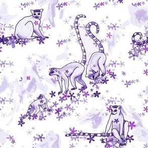 lovely lilac lemurs