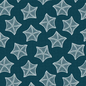 Sea Star Sketches 2