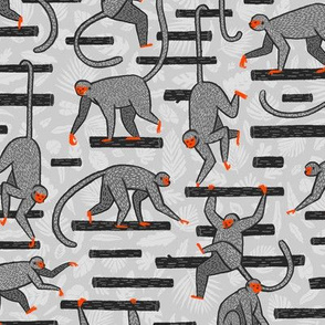 Monkeys in the Jungle