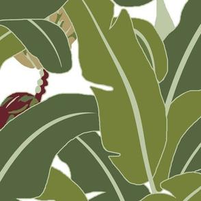 Banana Leaves - Medium