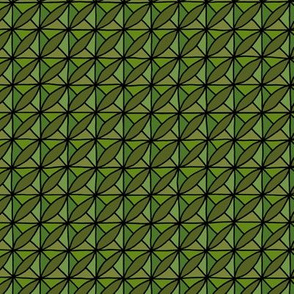 Wild Rice - Green