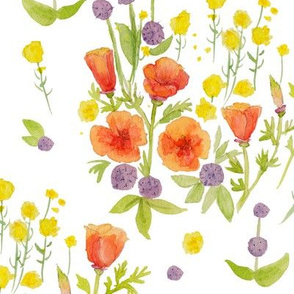 wildflowers watercolor on white (large scale) / nursery baby kids floral design
