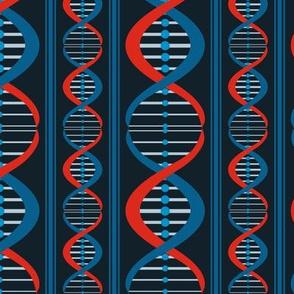 DNA Stripe
