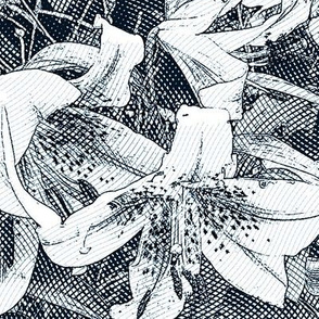etched lily