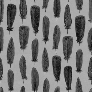Watercolor Feathers (Charcoal on Grey)