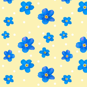 2018 forget me not 6x6 polkadot