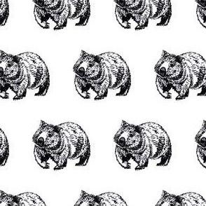 Wombat trot-B&W