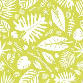 Tropical Leaves in Lime