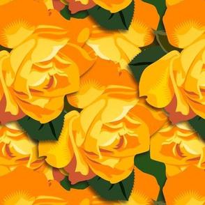 """Orange Honey"" roses"