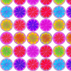 fruit slices 2