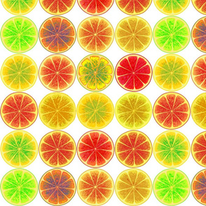 fruit slices 5