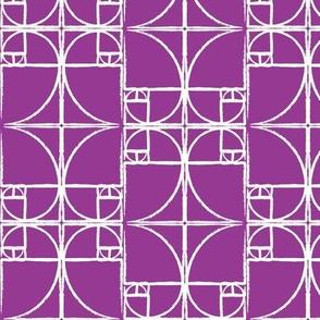 Raspberry Fibonacci Spiral