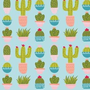 Potted Plants & Cactus - Blue
