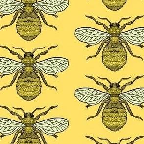 Yellow Bee Pattern