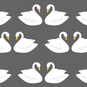 Swans in Gray