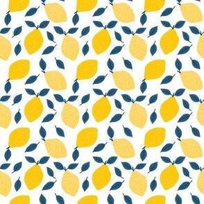 Lemons + Navy