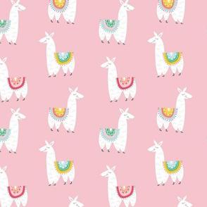 Llamas Alpacas in Pink
