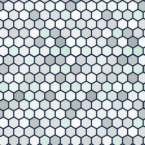 18-07X Hexagon Gray Mint White Dots