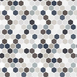 18-07W  Hexagon Neutral Gray Brown Blue