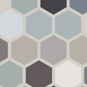 18-07V Hexagon Blue Gray Taupe Jumbo