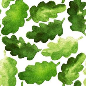 watercolor green oak leaves