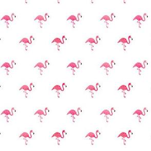 Flamingo watercolor mini on white