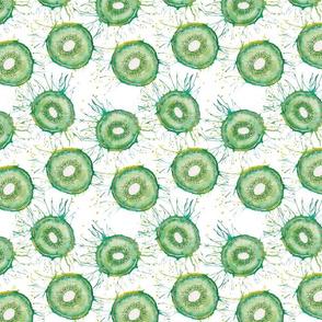 Watercolour kiwis