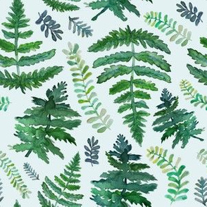 ferns on mint