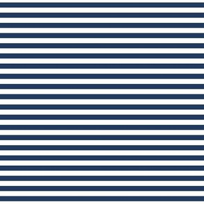 navy stripe || sugared spring