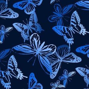 Midnight Flyers in Blues
