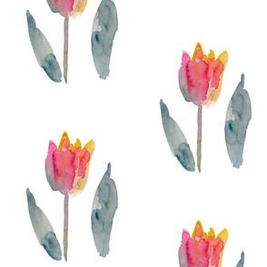 cestlaviv_parrot_tulip