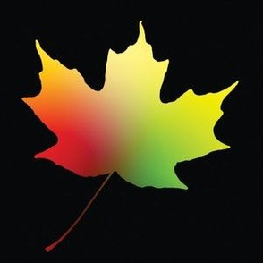Rainbow Maple Leaf, L