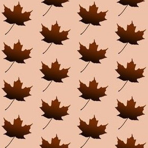 Chocolate Maple Leaf, S