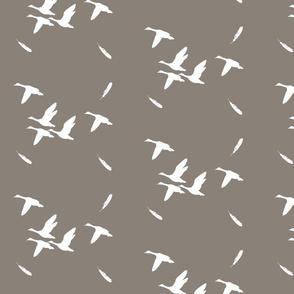 ducks on shroom