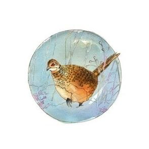 Winter Pheasant