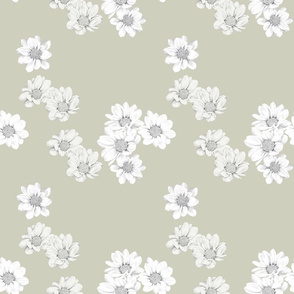 Grey-scale daisies