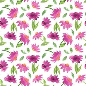 pink dahlias flower