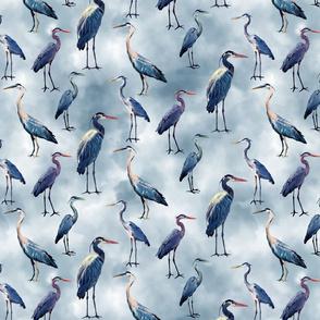 Blue Herons on Blue