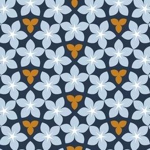 07452393 : U53 flowers : rainbow
