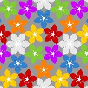 07453821 : U65floral : rainbow