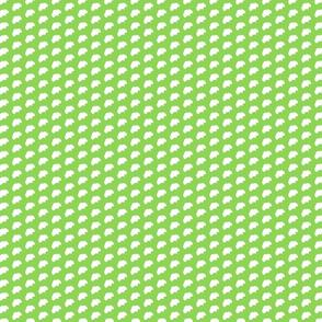 small green gingko