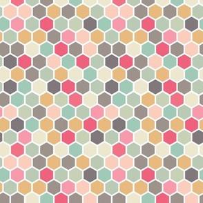 18-07S Hexagon Mint Green Gray